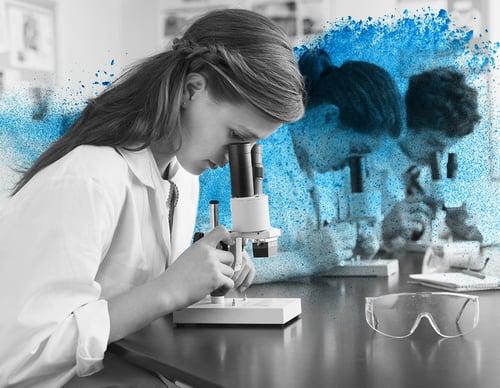 Case Study: St Cloud Area School District